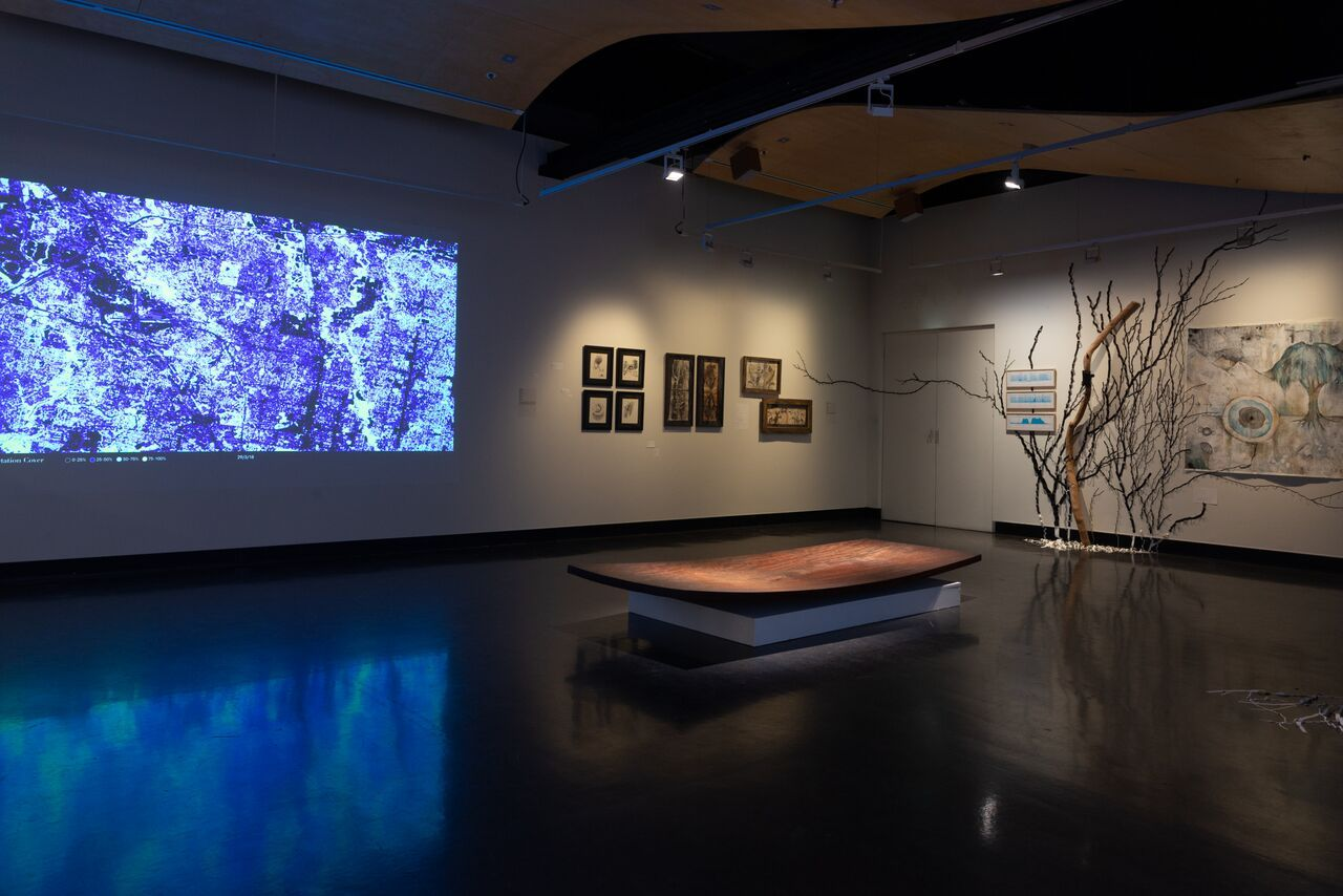 Aviva Reed, Installation, earth arts, voices of nature